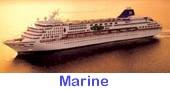 marine.jpg (5987 bytes)